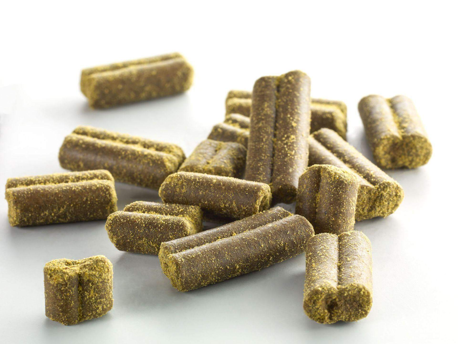 Artemisia Moringa mit Lachs und Süßkartoffel
